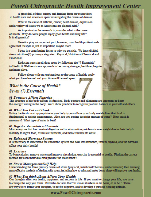 Seven Essentials Worksheet