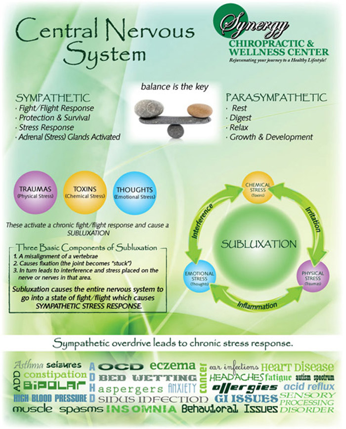Synergy-subluxation-cycle