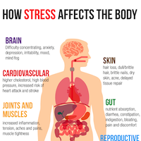 Thumbnail for stress infographic