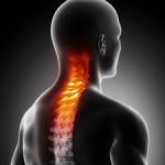 spine neck pain