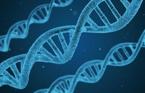 Image of DNA structures