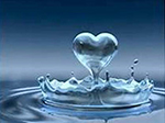 the-heart-of-wellness
