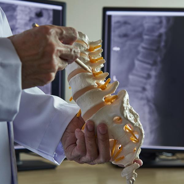 spine figure
