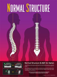 Marietta Chiropractor : Normal Foundation