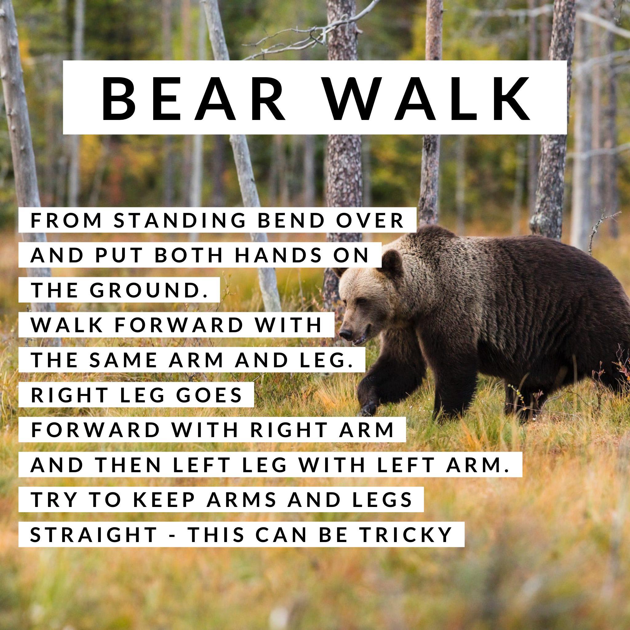 Animal Walks 2