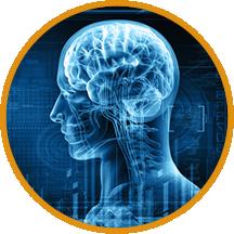 Functional Neurology