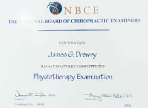 Chiropractor Amsterdam Physiotherapy Certification