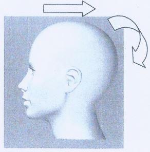 Neck Extension