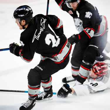 hockey players collision