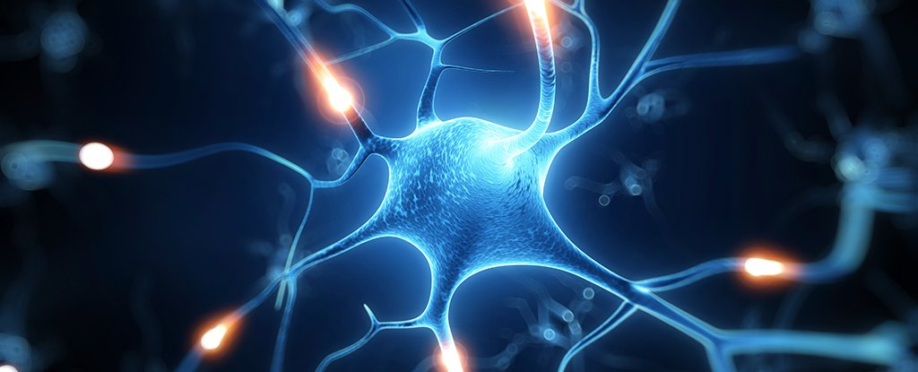 nerve-cell-energy_1024