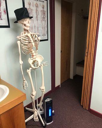 Skeleton standing in office