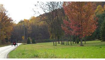 jujo-acres-farm-outside