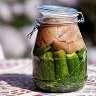 fermented-cucumber