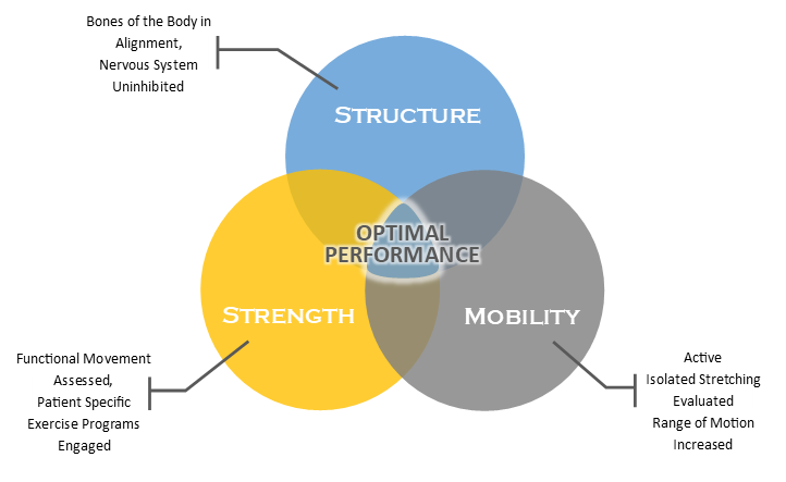 Structure, Strength & Mobility