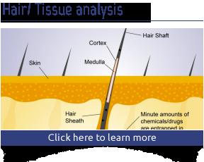 Hair / Tissue Analysis