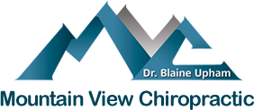 Mountain View Chiropractic and Wellness  logo - Home
