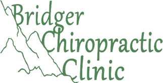 Bridger Chiropractic Clinic logo - Home