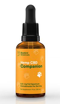 CBD_Companion