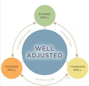 Wellness Cycle