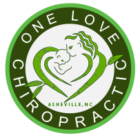 One Love Chiropractic logo - Home