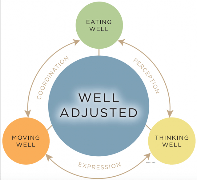 The Chiropractic Wellness Cycle