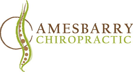 Amesbarry Chiropractic logo - Home