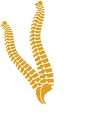 Black & Gold Chiropractic & Wellness logo - Home