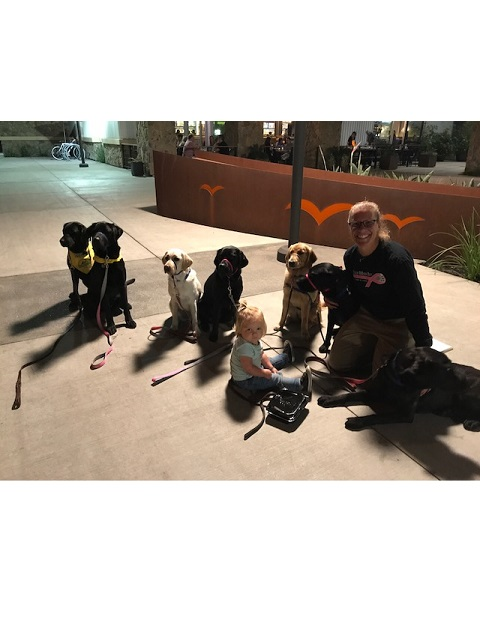 dr with several dogs