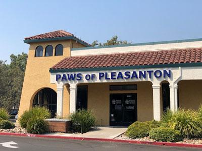 paws-of-pleasanton