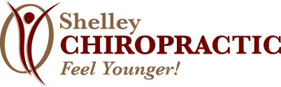 Shelley Chiropractic logo - Home