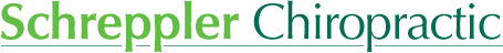 Schreppler Chiropractic Offices P.A logo - Home