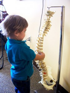Baby Playing with Demonstration Spine