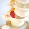 Chiropractic Care in South Philadelphia