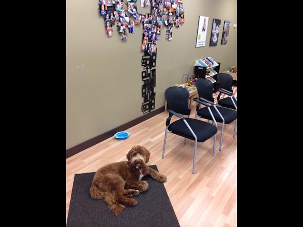 Murphy in waiting room
