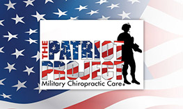 Patriot Project Logo
