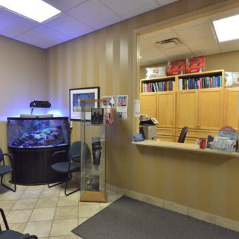 Sarnia Chiropractic Office