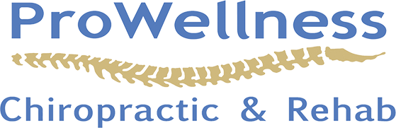 ProWellness Chiropractic and Rehab logo - Home