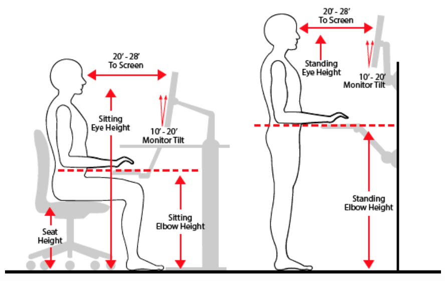 sitting and standing eye height ilustration