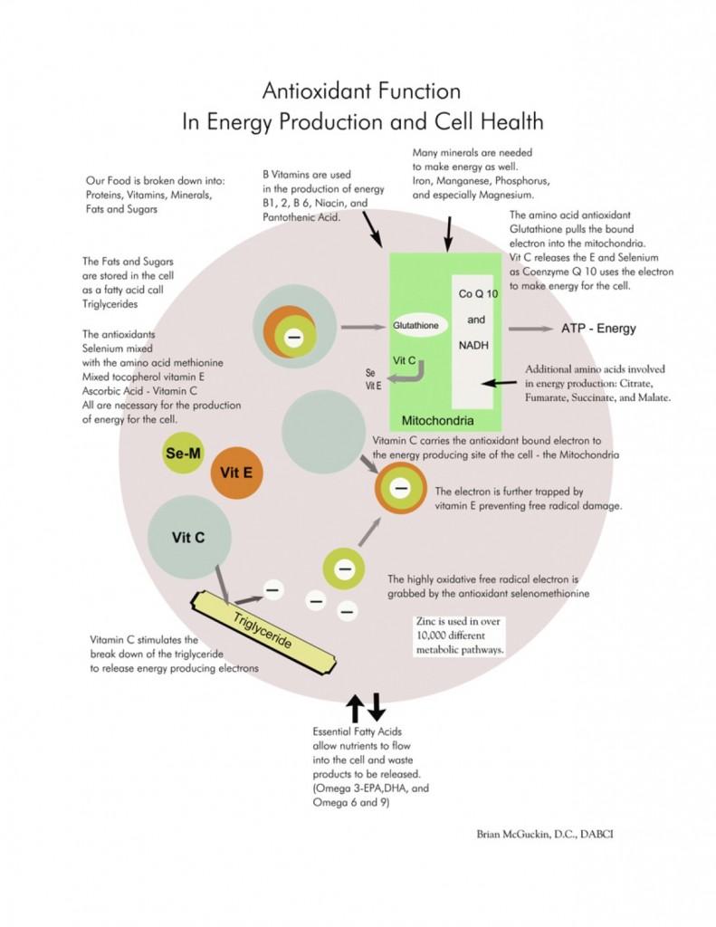 Antioxidant_Energy_Prod_jpg