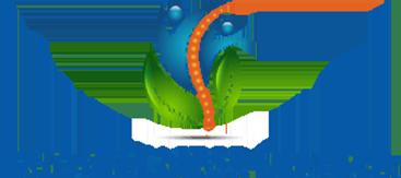 DC Wellness Center logo - Home