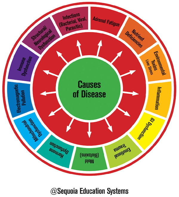 Causes of Disease Wheel Graphic