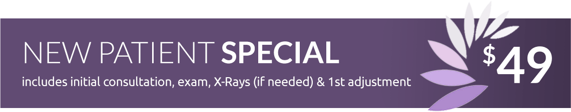 Chiropractic Care - $49 New Patient Special