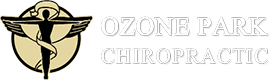 Ozone Park Chiropractic logo - Home