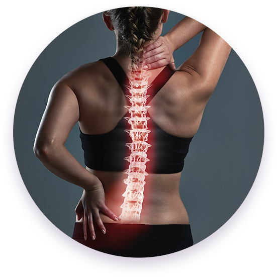 Woman's back with spine highlighted