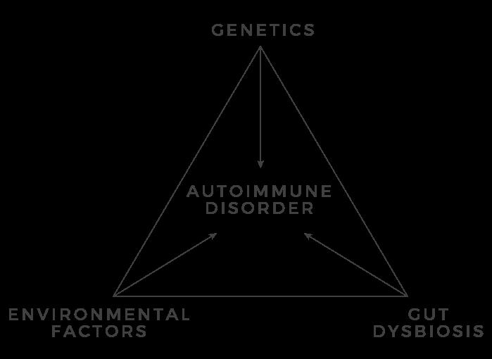 autoimmune disorder diagram