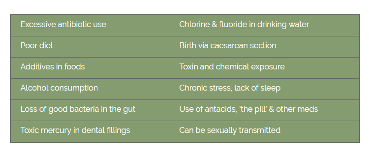 Causes of Candida