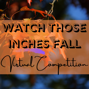 watch those inches fall