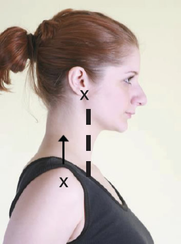 postural analysis adult