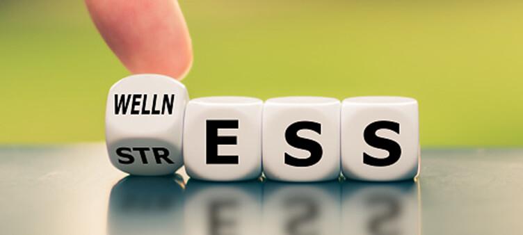 Stress - Wellness blocks