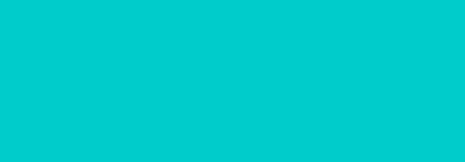 Denton Sports Chiropractic logo - Home